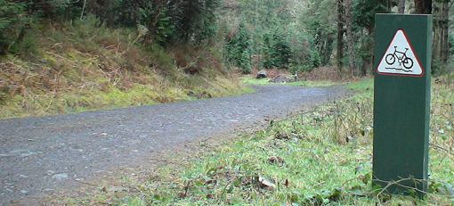 Gwydyr Forrest Cycling Trial